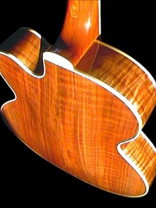 Guitar Luthier